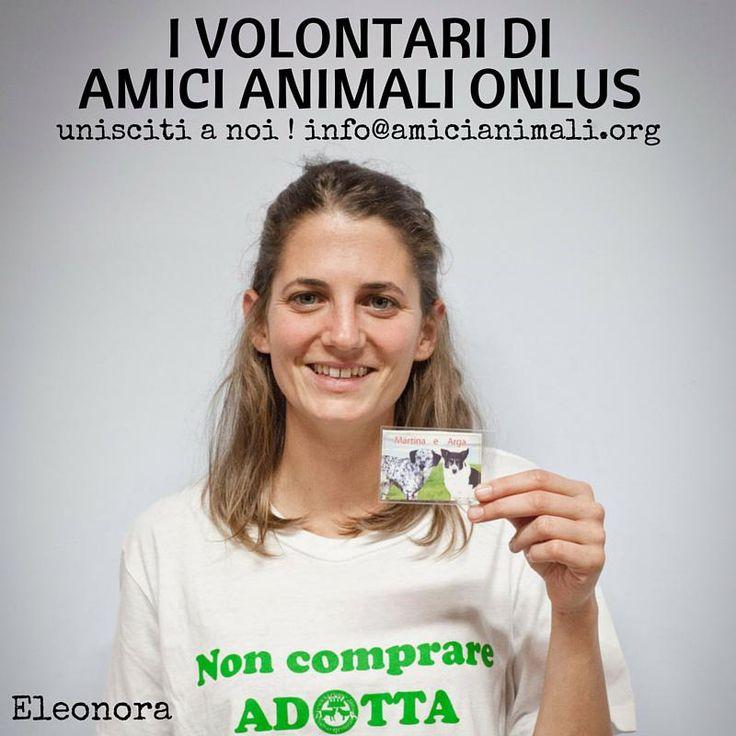 #cimettolafaccia ! ecco i #volontari di @AssAmiciAnimali ! #unisciti a noi ! eccoci qui: http://on.fb.me/1PtrAzV ph@Irene Pezzella