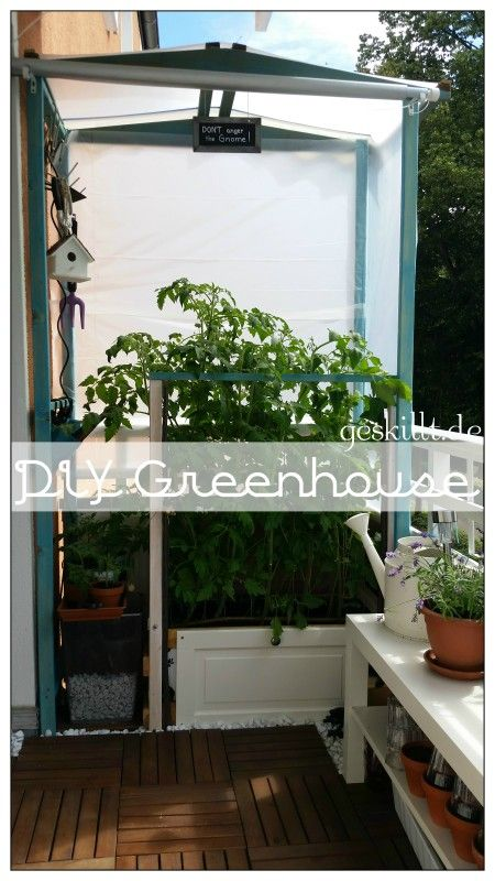 DIY Tomatengewächshaus (greenhouse) Endlich nimmt mein Stadtgarten Gestalt an :)