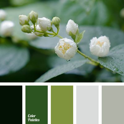 Color Palette #2752                                                                                                                                                     More