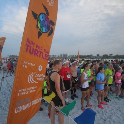 """More than 1,000 runners and walkers hit the beach to help endangered and threatened sea turtles during Mote's 30th Run for the Turtles today, April 2, on Siesta Public Beach. (Race results below).  """"It was so great to see so many kids and adults out here today supporting sea turtles and helping to spread awareness of the sea turtle season, which starts May 1 and goes through October 31,""""said Kristen Mazzarella, senior biologist with Mote's Sea Turtle Conservation and Research Program. """"It…"""