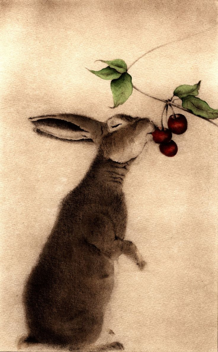 C.C. Barton, Lapin aux Ceries, (rabbit with cherries), Etching