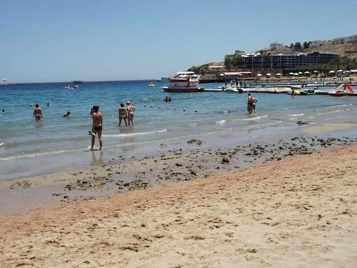 The RSDC team haven't seen such a low tide in Naama Bay for years!! Is it a crazy lunar cycle or do you know something different? Waiting to hear from you.....!