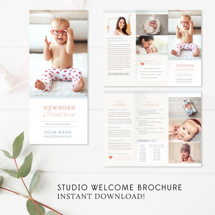 Newborn trifold brochure flyer photography guide millers lab