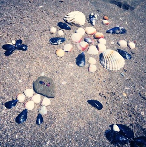 Beach fun Creating figures with stones, shells, wood, ets.