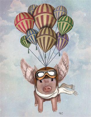 Flying pig                                                       …