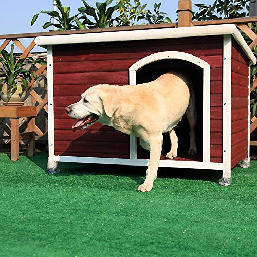 8 Backyard Ideas To Delight Your Dog: 253 Best Gift Ideas For Dogs And Their Owners Images On