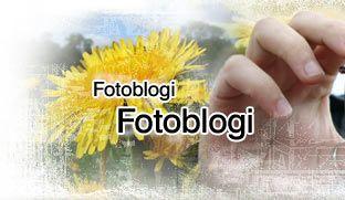 Onet Blog - największy polski serwis blogowy, blogi znanych, nastolatków i dorosłych