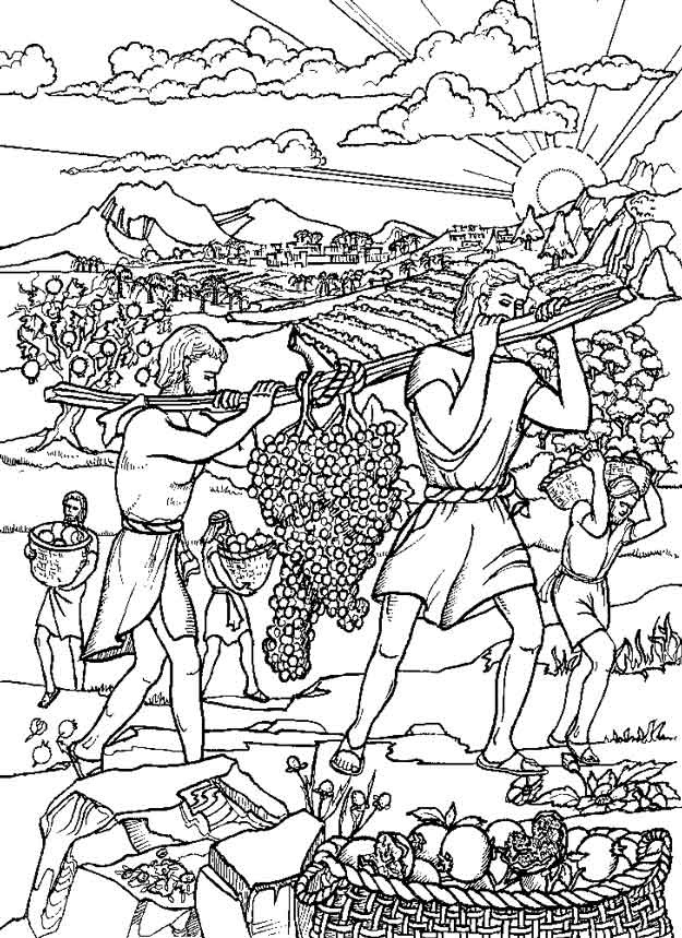 35 best images about joshua on pinterest red licorice for Licorice coloring page