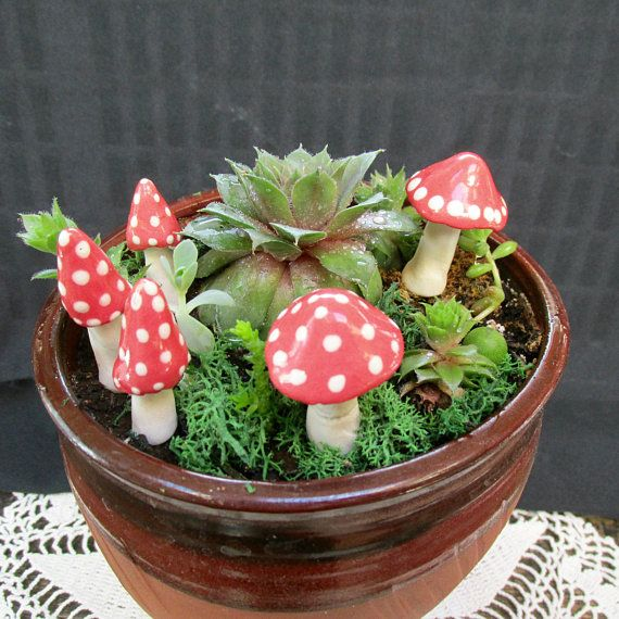 Fairy Garden Mushrooms - set of 5- individually crafted - porcelain clay-  glazed and fired  - miniature