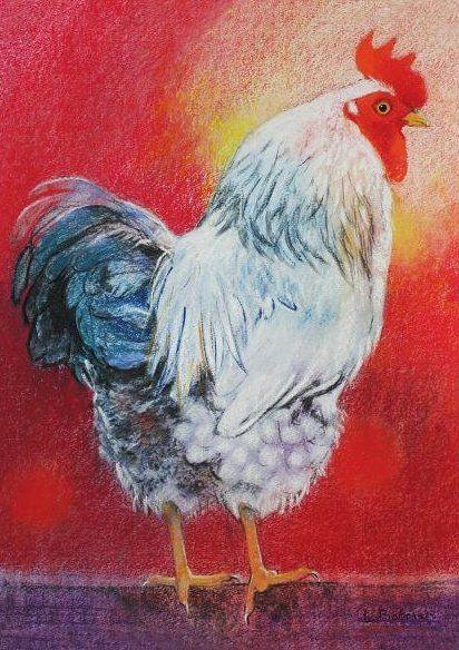 Haan - Loes Botman pastels, pastelkrijt tekeningen