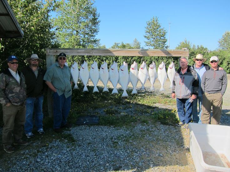 20 best images about alaska halibut fishing charters on for Alaska fishing packages