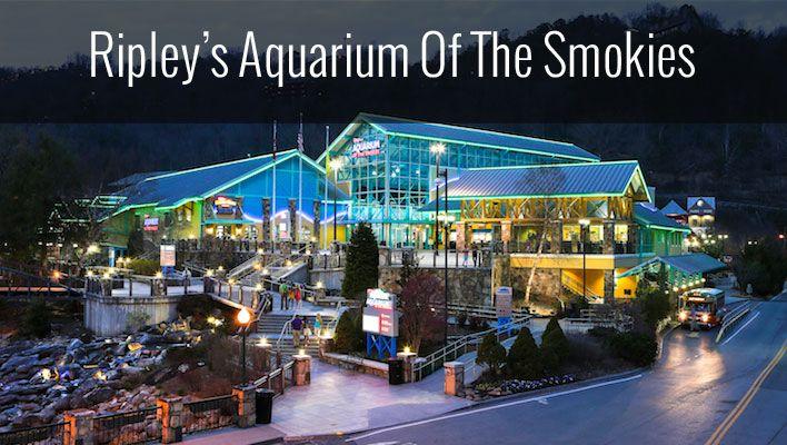 25 Best Ideas About Gatlinburg Aquarium On Pinterest