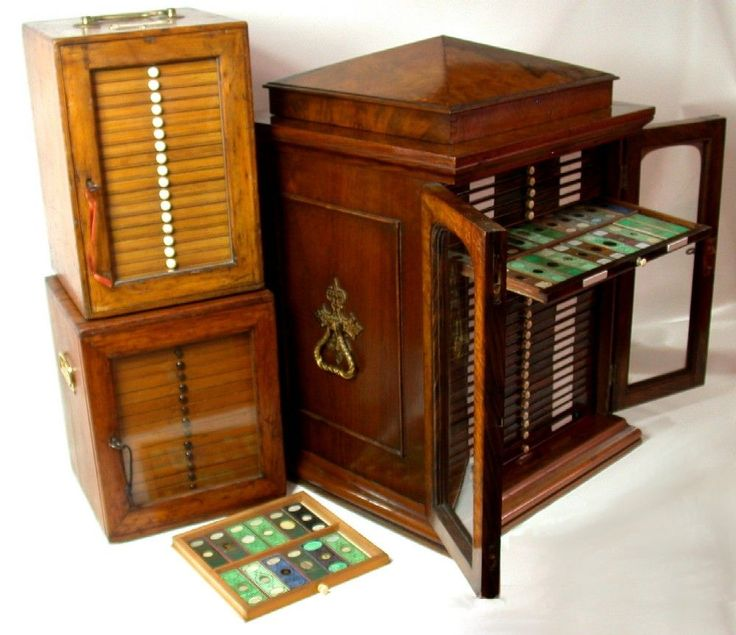 Antique Victorian Microscope Slides
