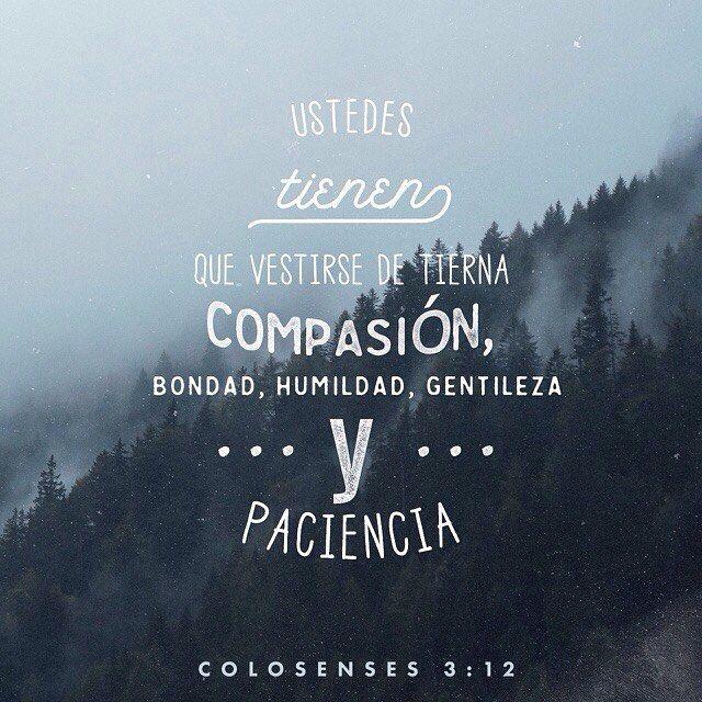 Dios los ama mucho a ustedes y los ha elegido para que formen parte de su pueblo. Por eso vivan como se espera de ustedes: amen a los demás sean buenos humildes amables y pacientes. Colosenses 3:12  @youversion @ibvcp #buenosdias #islademargarita #venezuela #goodmorning