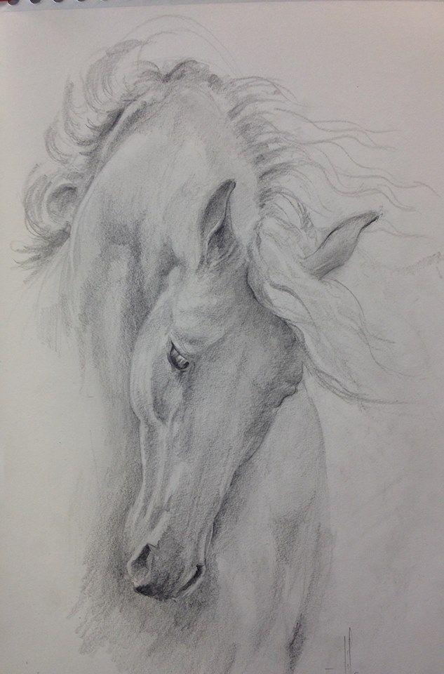 Dibujo caballo a lapiz sobre papel guarro A3