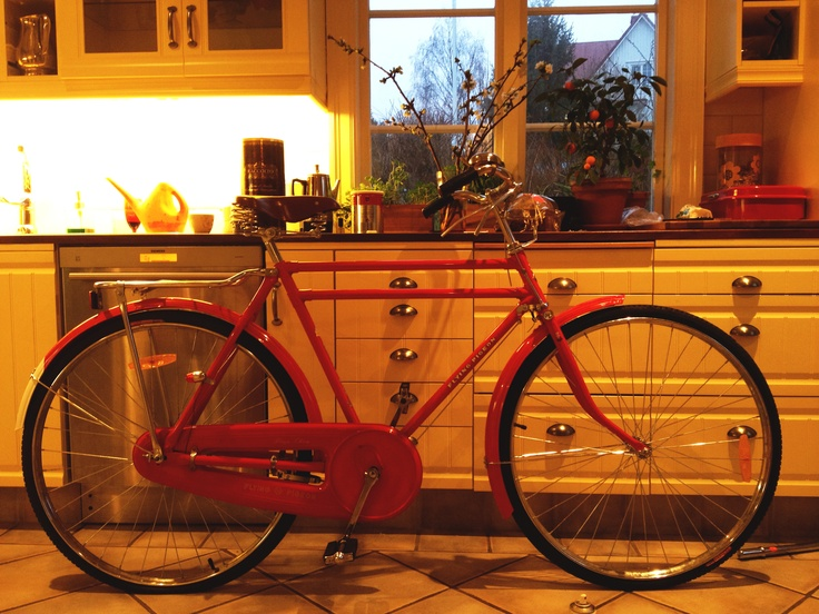 Red fast Flying Pigeon bike.