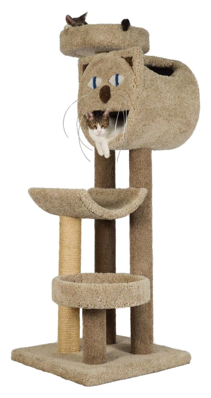the  best cool cat trees ideas on pinterest  cat towers cat  - cat trees carpet covered works of art