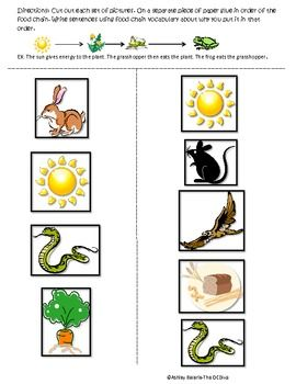 Food Chain Cut and Paste | SCIENCE | Pinterest | Food Chains, Cut And ...