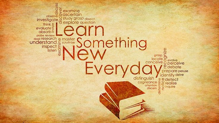 learning something new everyday quotes - Google Search