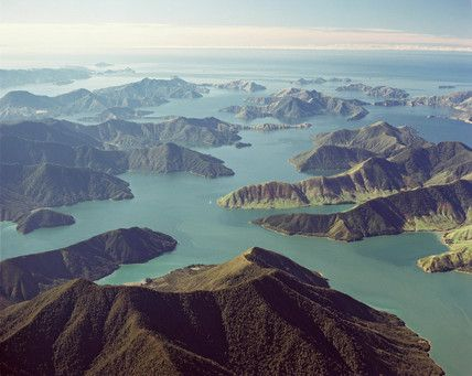 Pelorus Sound #newzealand http://www.purenzweddings.com/blog/weddings/why-new-zealand-is-the-destination-of-choice-for-weddings