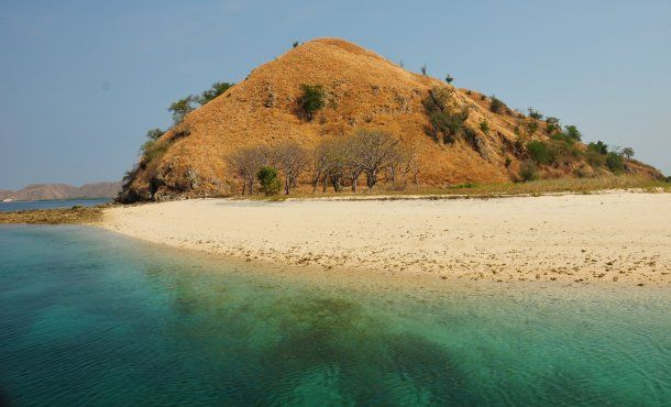 See The Beauty Of The Underwater World at Batu Bolong Komodo - 1001malam.com