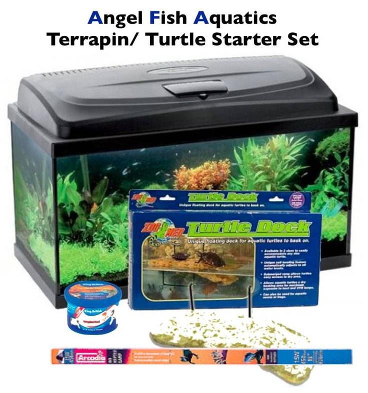 turtle aquarium | Terrapin/ Turtle Aquarium Starter Set