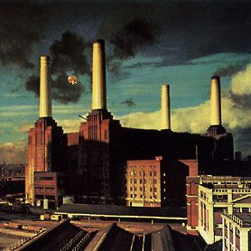 Animals - Storm Thorgerson