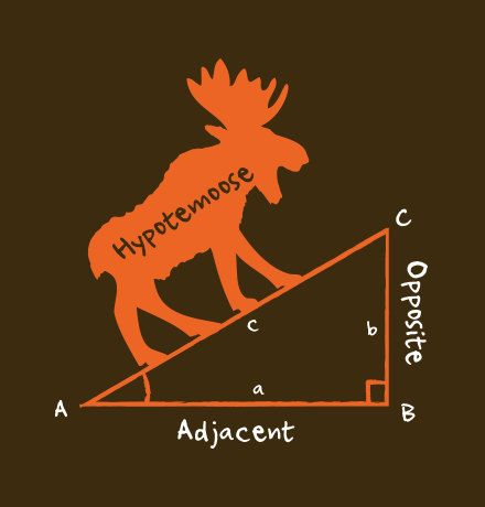 Who knew that longest side on a right triangle was called a Hypotemoose. Get this funny math t-shirt today! This t-shirt has been carefully