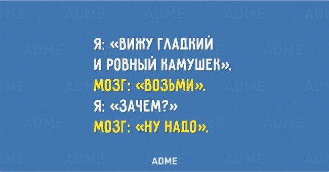 Яvs. Мозг