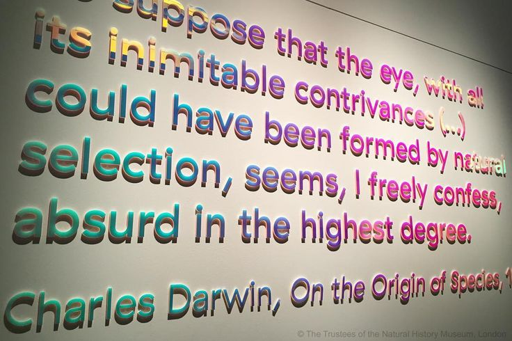 Charles Darwin on the evolution of the eye in On the Origin of Species, 1859, and represented in our #ColourAndVision exhibition through dichroic filter colour.