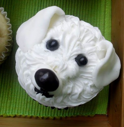 Birthday Song To Dogs Dog Eats Cake