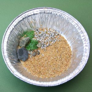 Sand, pebbles and artificial plants set into a metal tin to begin a miniature pond from e-z water. - Photo © 2011 Lesley Shepherd