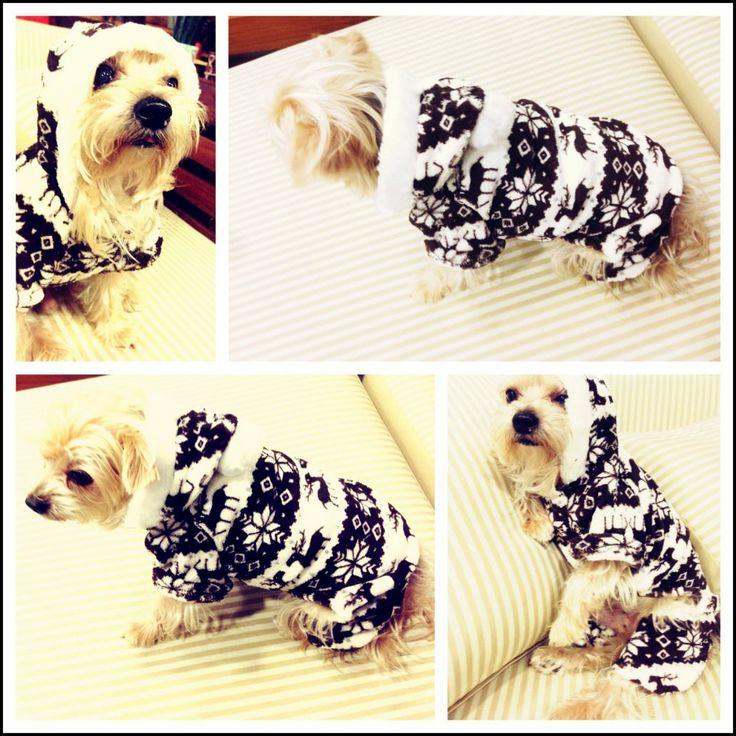 Snowflake Jumpsuit köpek minderi köpek yatakları köpek yatağı petshop köpek malzemeleri kopek kıyafetlerı köpek kıyafetleri kopek elbıselerı köpek elbiseleri kopek elbise köpek elbise dog clothes köpek modası kopek modası dog fashıon köpek için kıyafet kopek ıcın elbise köpek için elbise köpek paltosu köpek montu köpek ceketi köpek tişörtü KÖPEK KIYAFETİ KÖPEK ELBİSESİ KÖPEK ÜRÜNLERİ KÖPEK ÜRÜNÜ KÖPEK GİYİM www.kemique.com