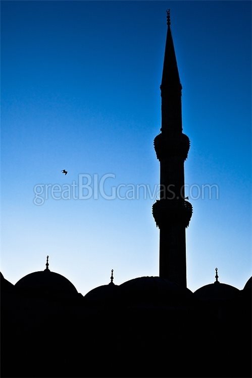 Blue Mosque Silhouette in Istanbul Twilight