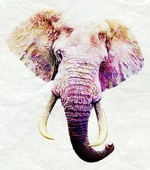 Elephant Art Copyright © 2015 Stacey Chiew. All rights reserved.