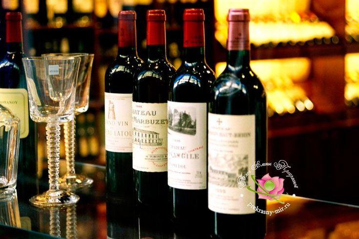 10 правил выбора хорошего вина в магазине / Едальня