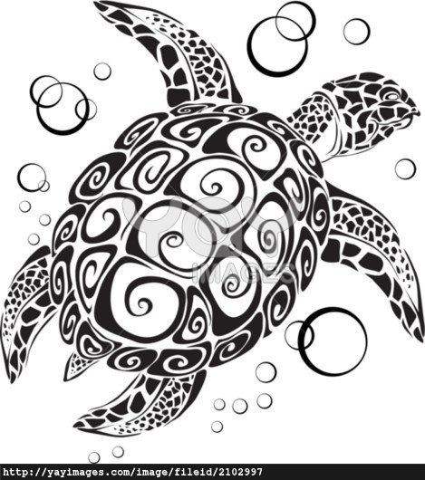 The turtle floats in depth of the sea