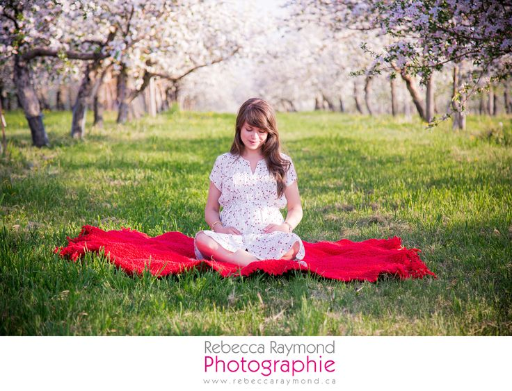 pregnancy photography - maternity photoshoot idea - poses position suggestion maternité - orchard photoshoot