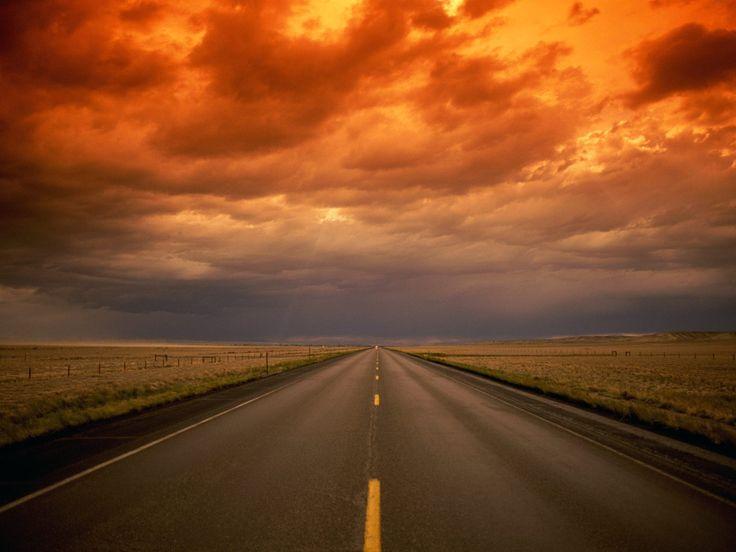 Traffic can be beautiful - The Traffic Gurus