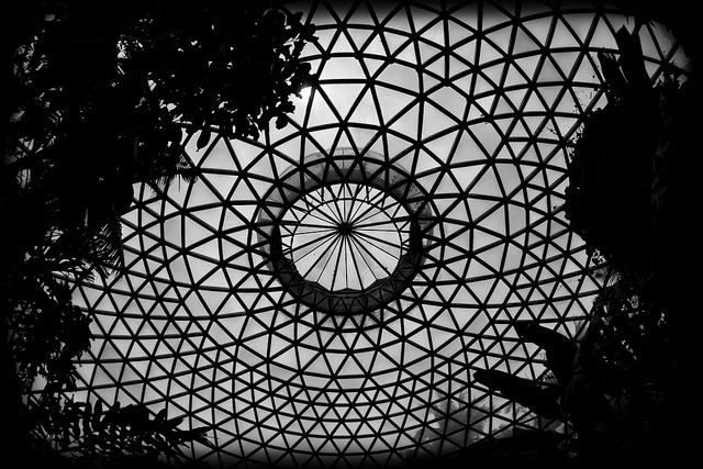 Geodesic Tropical Dome at Mt Coot-Tha Botanic Gardens