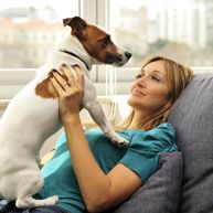 The 10 Best Apartment Dog Breeds: Why Size Doesn't Matter