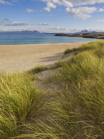 Sand Dunes and Dune Grasses of Mellon Udrigle Beach, Wester Ross, North West Scotland