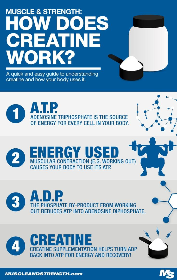 facts about creatine and its importance to the body