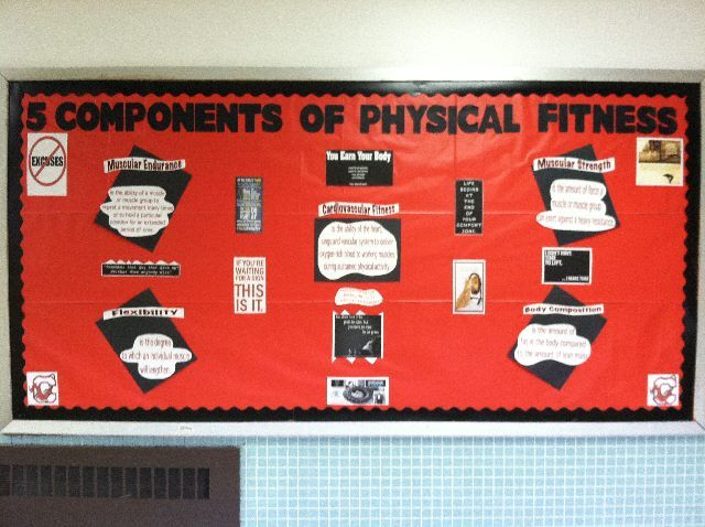 5 components of pe Shape america's national standards & grade-level outcomes for k-12 physical education define what a student should know and be able to do as result of a highly effective physical shape america has defined the essential components of physical education essential components for pe: policy and.