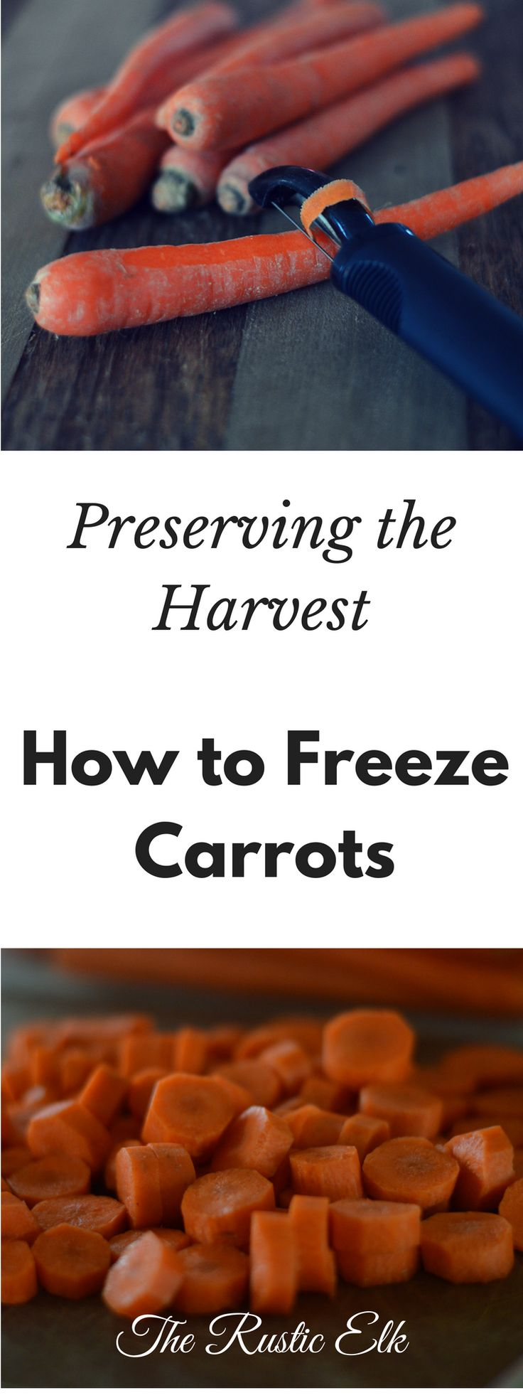 Freezing carrots is an easy way to preserve your harvest without sacrificing time or flavor. Try freezing them for a quick option to add to any meal.