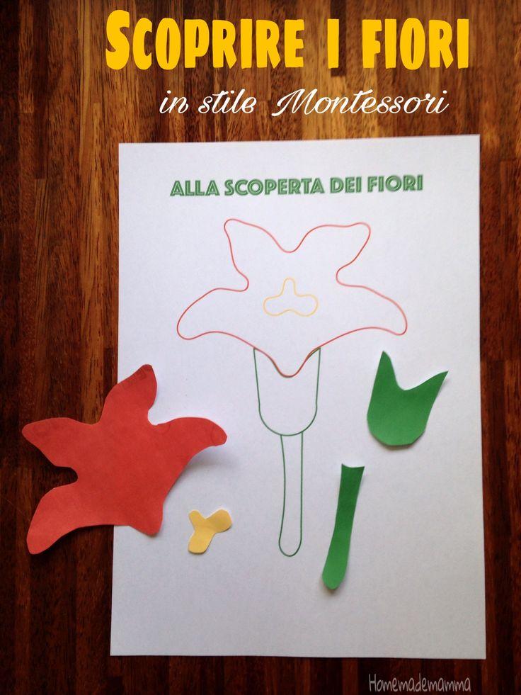 Scoprire i fiori in stile Montessori