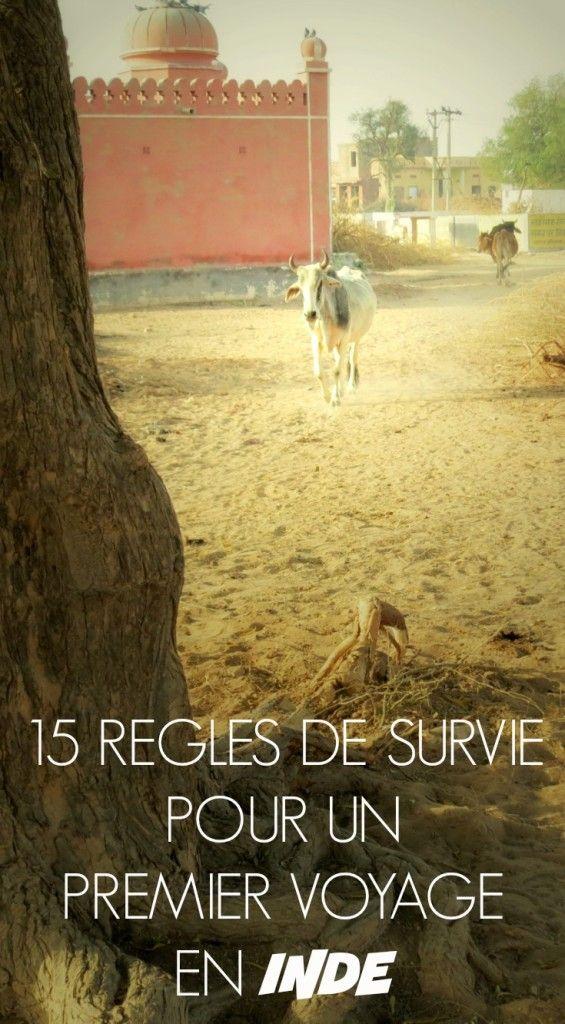 15 règles de survie pour un premier voyage en Inde