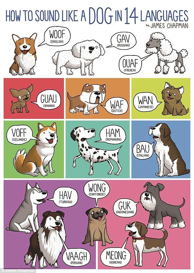 sounds dogs like
