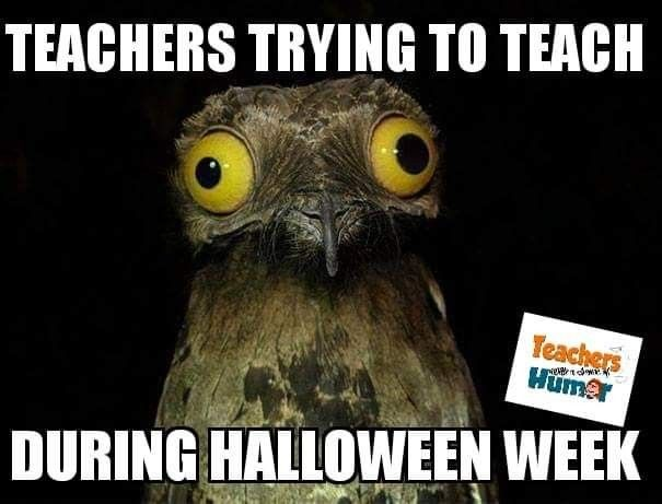 Pin By Teach4 Him On Teacher Thoughts Halloween Memes Teachers Halloween Classroom Humor