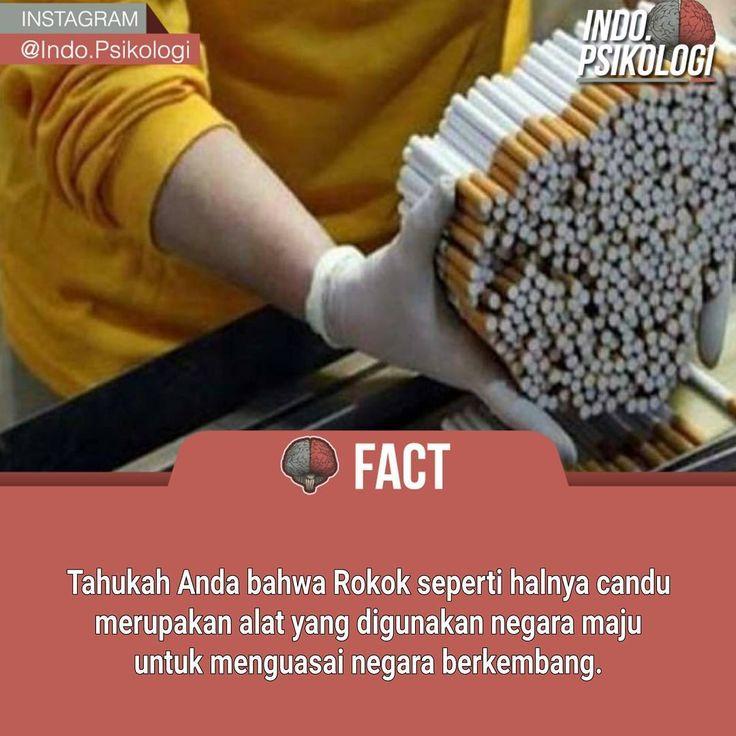 rokok adalah candu yang digunakan negara maju untuk menguasai negara berkembang #psikologi #fact #fakta
